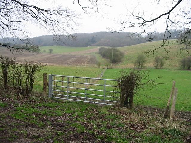 View across Lynsore Bottom