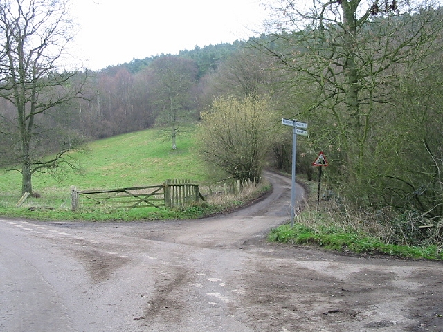 Steep road into Covert Wood