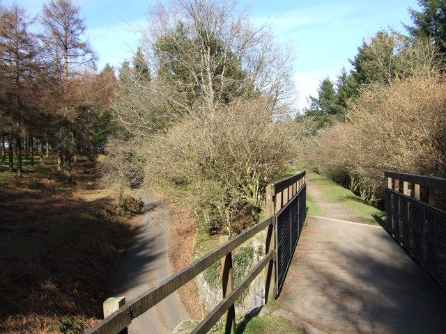 Bridge near Burrator