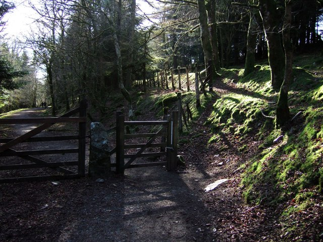 Path junction below Yennadon Plantation