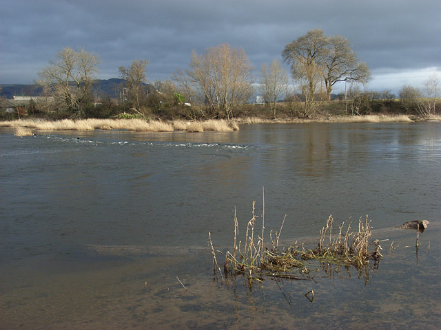 The River Forth