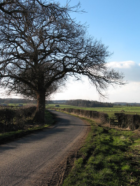 Salmon Lane near Snape