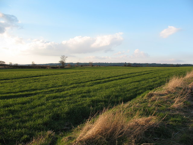 Agricultural Land at Patrick Brompton