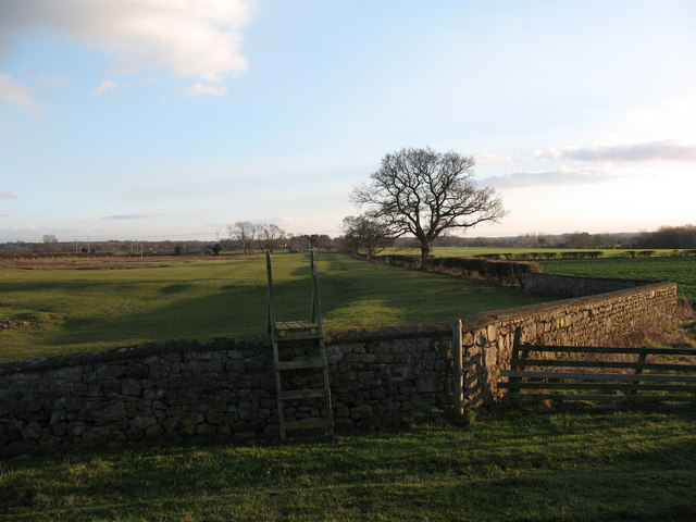 Footpath junction and stile at Langthorne