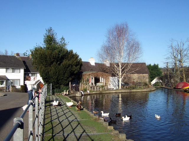 Village pond, Llandudoch/St Dogmaels