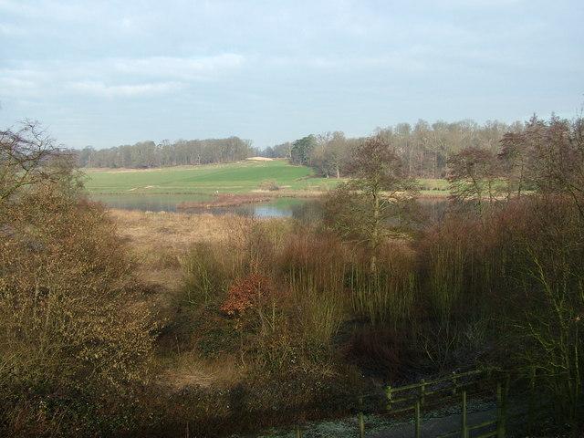 The River Mimram, Hertingfordbury.