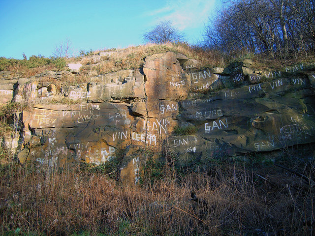 Disused quarry - Droppingwell Lane
