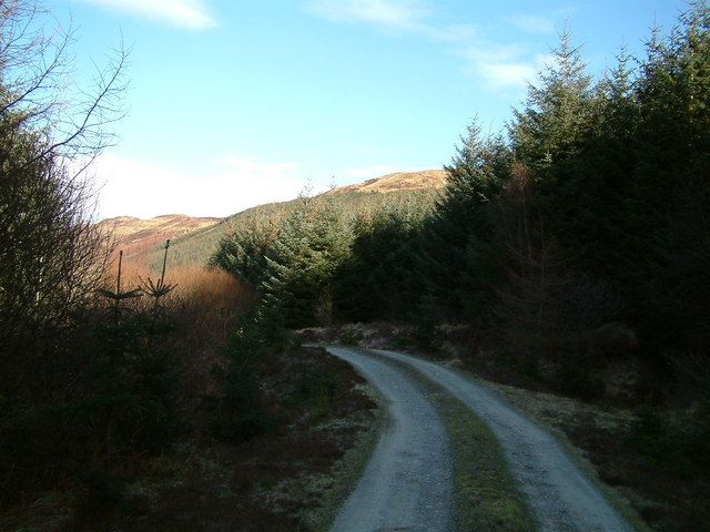 Forestry track below Bealach na h-Imrich