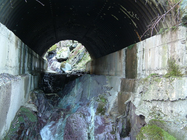 Forestry track bridge over Anie Burn