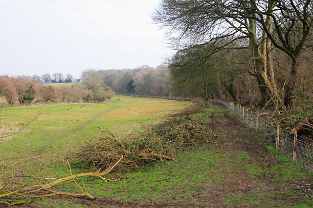 Fields and woodland below Coombedown Hanger