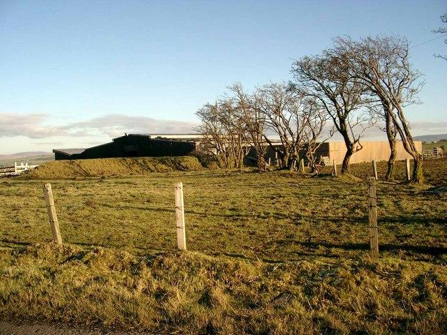 Mossback farm