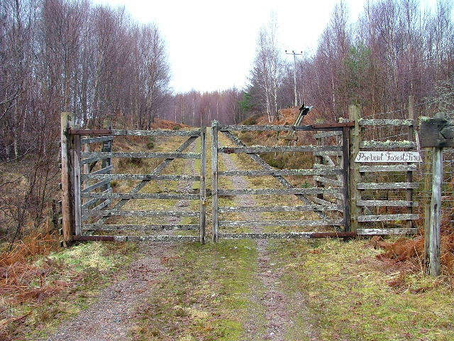Lichen Covered Gate and Forest Track