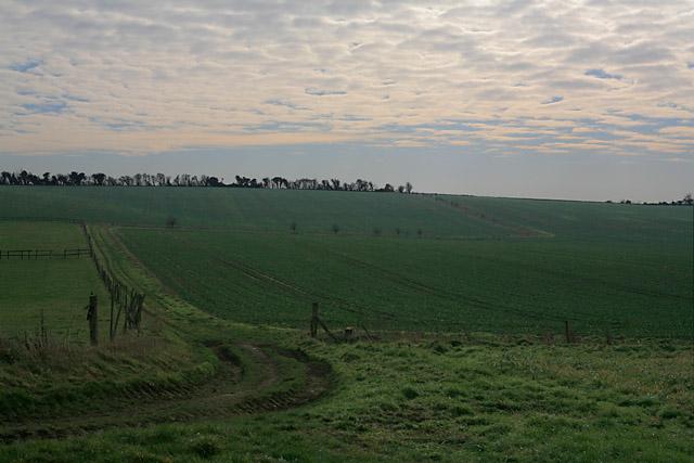 Fields and footpath south of Southfield Farm