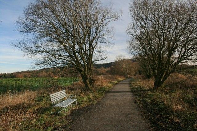Cycleway, Little Waterfall Farm