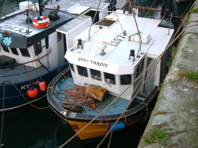 Pittenweem boats in harbour