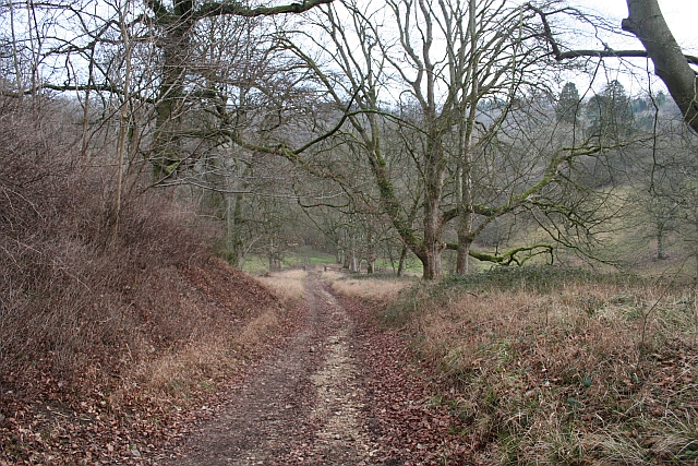 Bridleway through the Grounds of Edgeworth Manor
