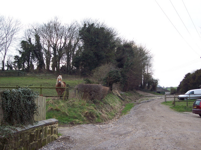 Byway from Burcombe to the Old Shaston Drove