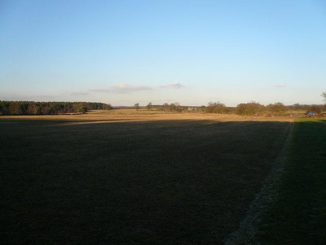Whitesprings view towards Darley Forest Grange