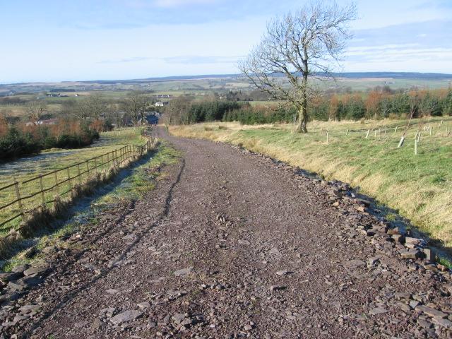 Track from Lambhill