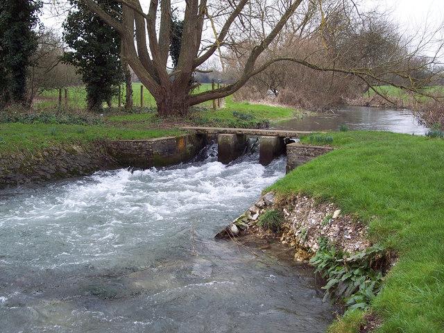 River Ebble near Odstock Church