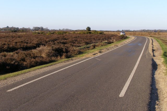 Narrow road east of Milkham Inclosure, New Forest