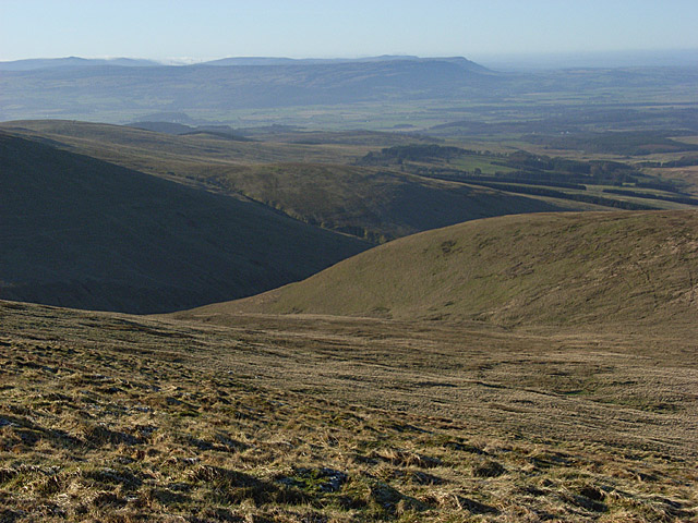 Mickle Corum hillside