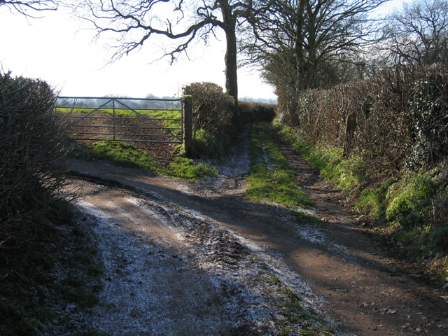 Lane and Footpath Junction in Kelsall