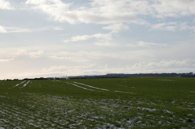 Flat fields at Blackhillie