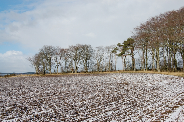 Snow on a freshly ploughed field