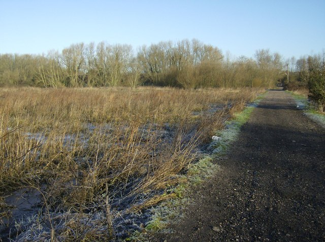The track to Southcote Lock and the adjacent watermeadows looking north