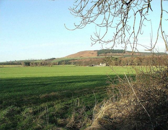 Field near Shawdon Hall