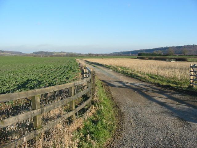 Farm Track across Ellis Hill