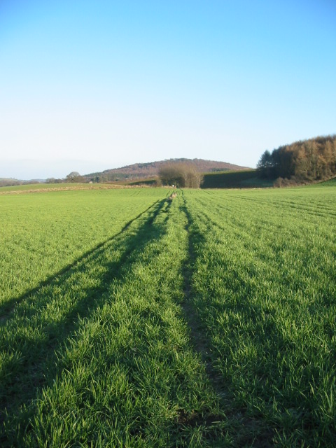 Footpath to Ampleforth and Gilling East