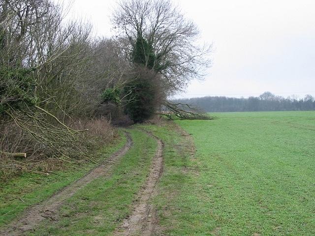 Roman road, near Telegraph Farm