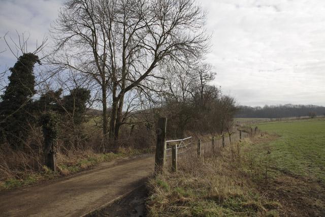 Road to Waresley Wood, Waresley, Cambridgeshire