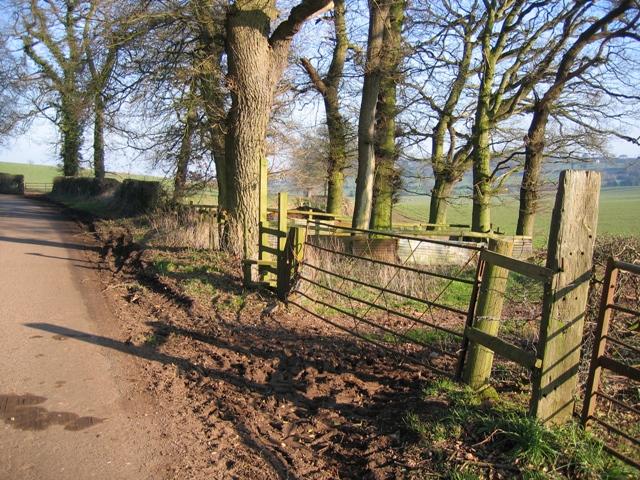 Footpath East from Utkinton Lane