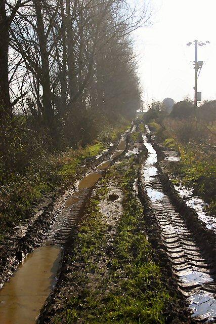 Red Hill Drove, Wilburton