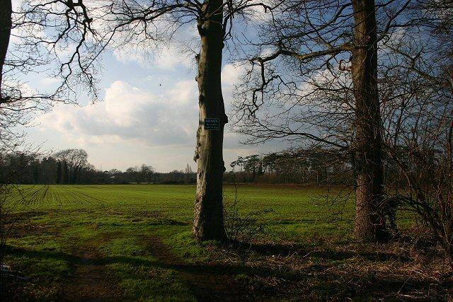 Fields at Wilburton