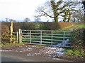 SJ5162 : Eddisbury Way near Hoofield by John S Turner