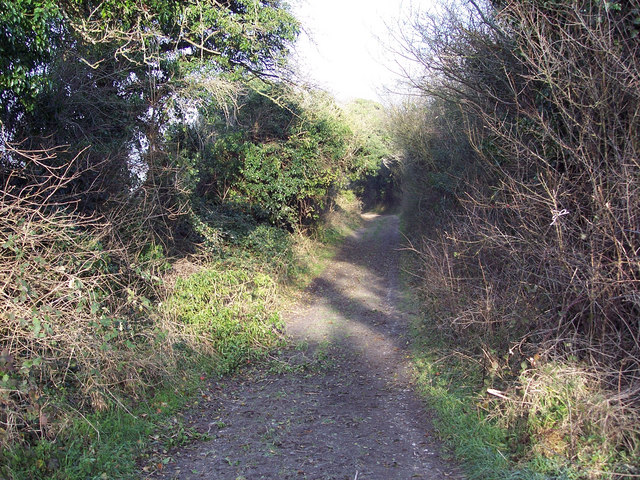 Bridleway from Pennings Drove to Shutts Lane, Coombe Bissett