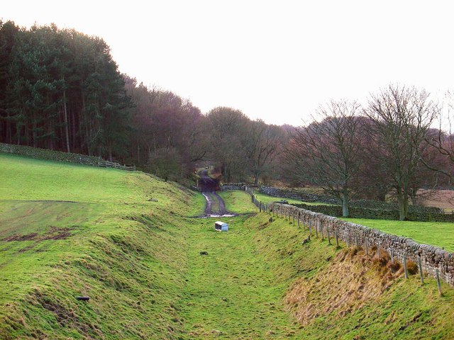 Trackbed of the Allendale Branch
