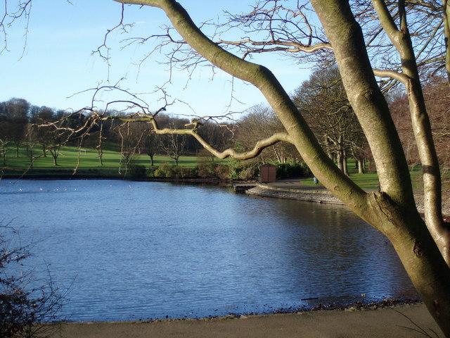 Lake in Beveridge Park, Kirkcaldy