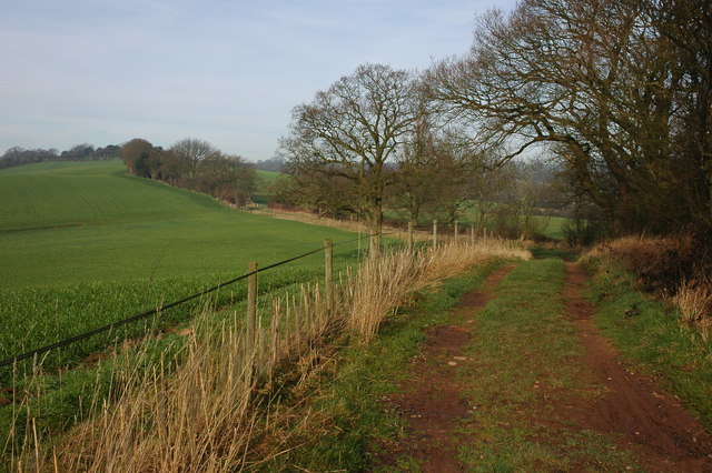 Bridleway and track on Castle Hill, Kingsford