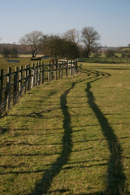 Fence and Pasture, Thorpe Beck