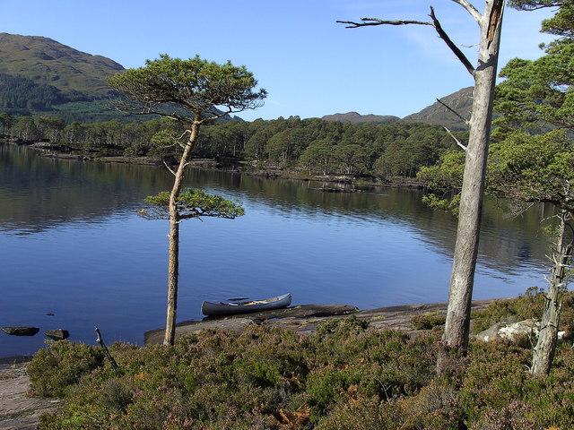 Garbh Eilean,looking to eilean Ruairidh Mor. Loch Maree