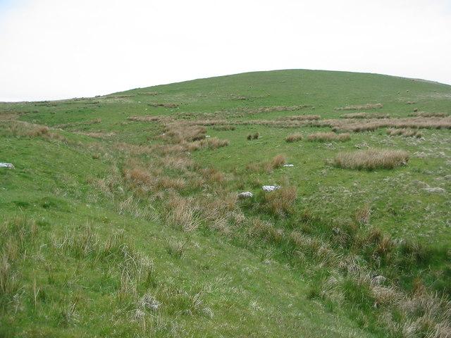 Tinnis Well