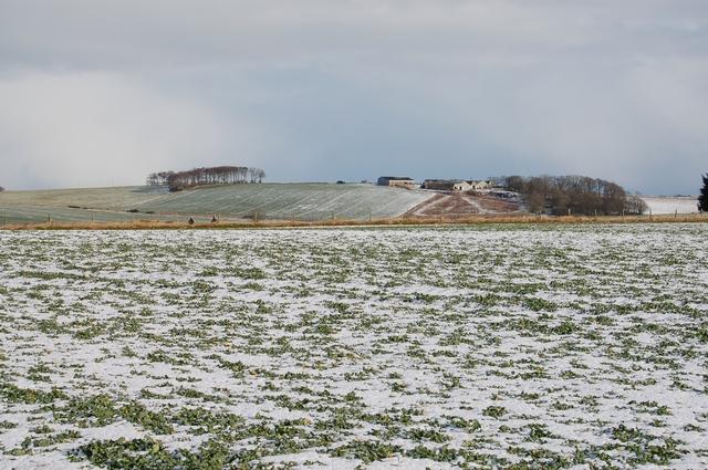 Fields below Cairnhill