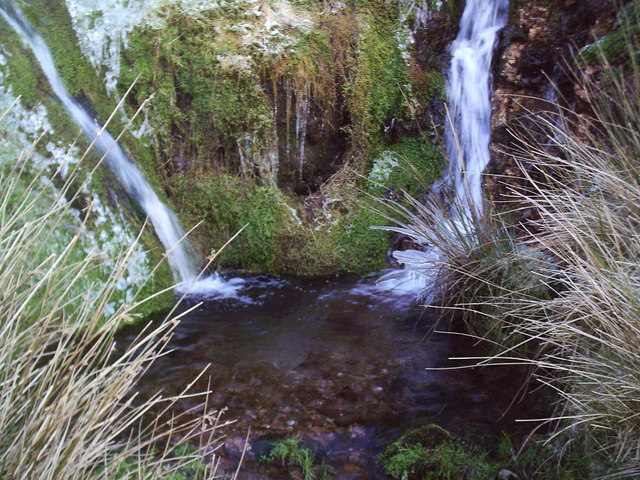 Two Springs Feed into the Chalybeate Well near Walston