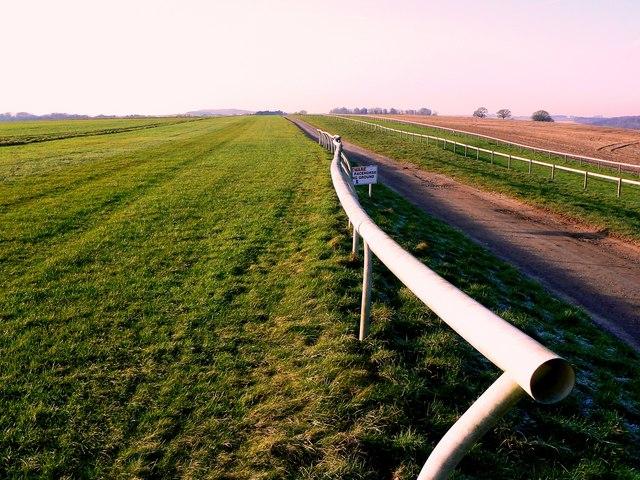 A view along the gallops, Manton House Farm, Marlborough