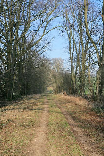 Footpath east of Tufton Warren Farm